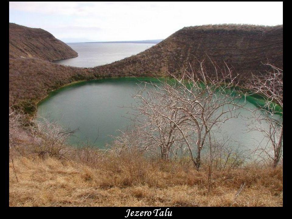 www.vitanoblepowerpoints.net Jezero Talu