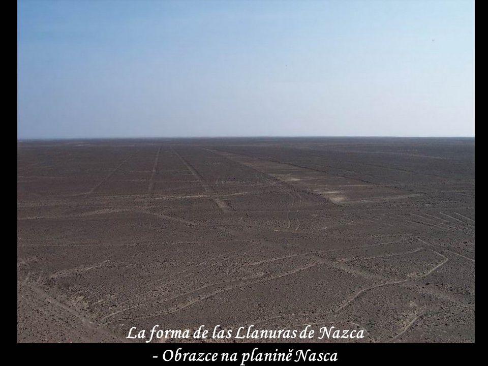 La forma de las Llanuras de Nazca - Obrazce na planině Nasca