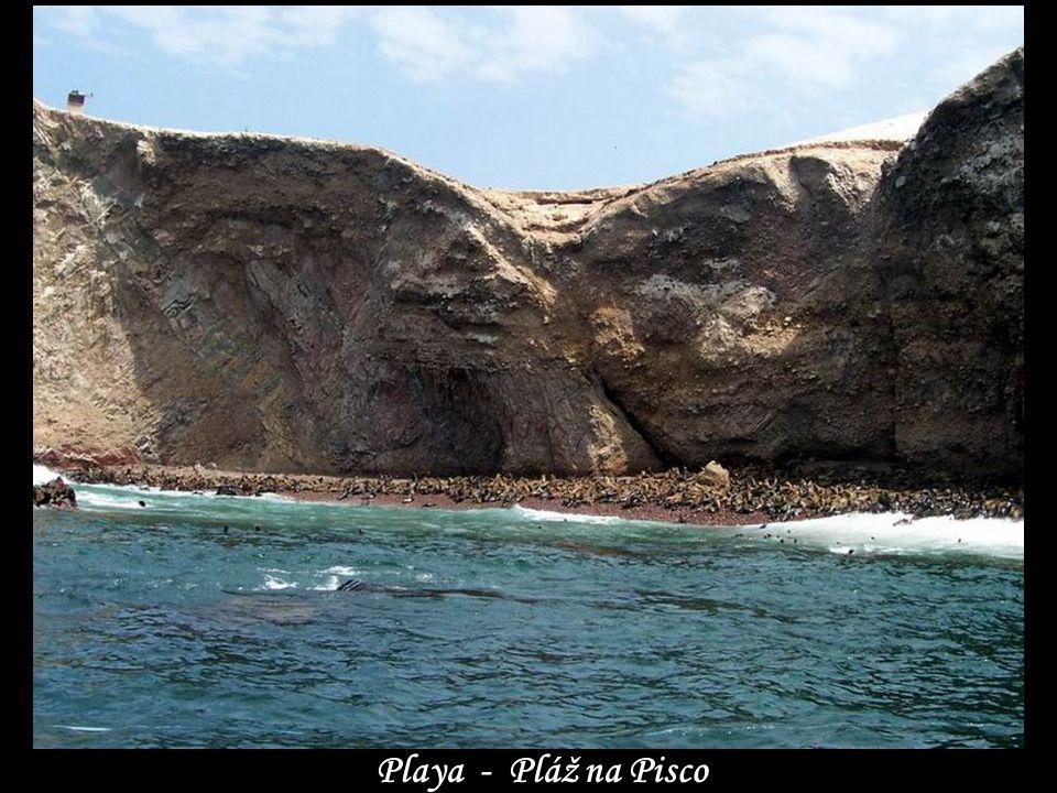 www.vitanoblepowerpoints.net Playa - Pláž na Pisco