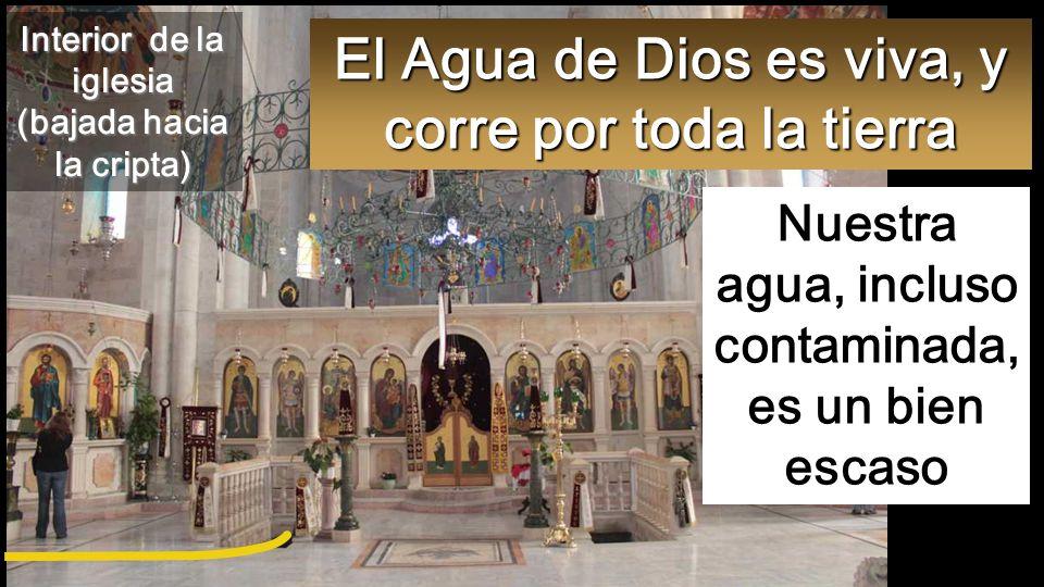 El Agua de Dios es viva, y corre por toda la tierra
