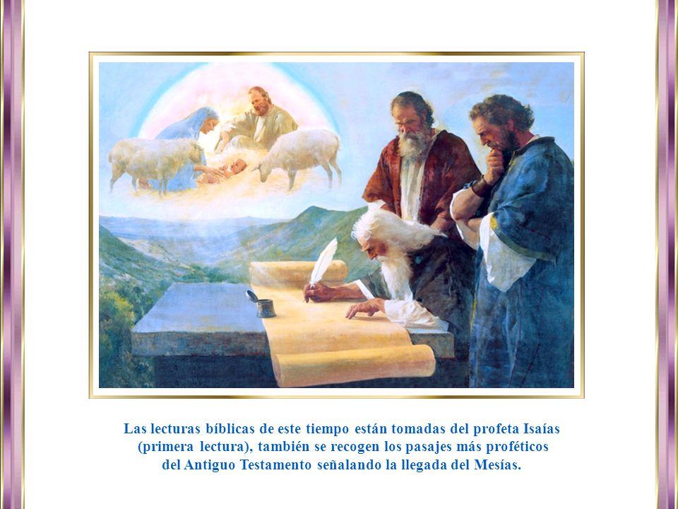 Las lecturas bíblicas de este tiempo están tomadas del profeta Isaías
