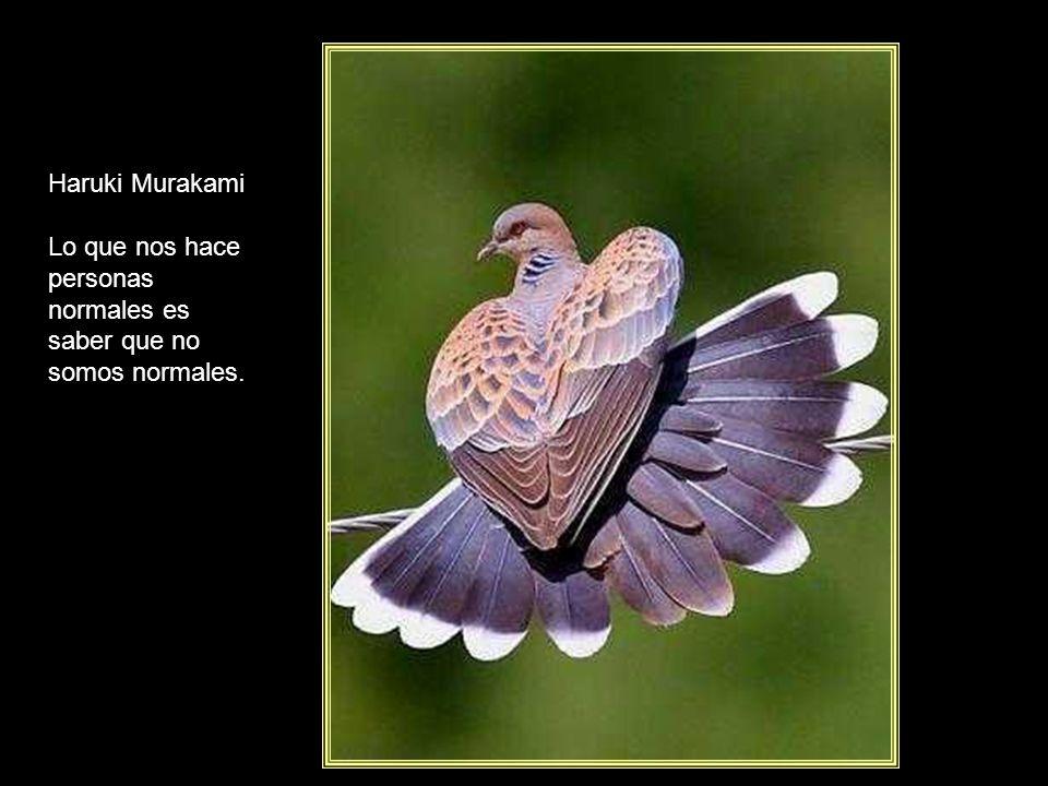 Lo que nos hace personas normales es saber que no somos normales.
