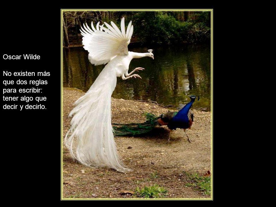 Oscar Wilde No existen más que dos reglas para escribir: tener algo que decir y decirlo.