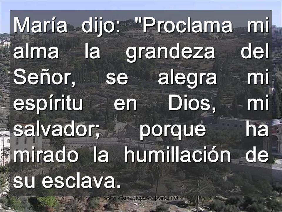 María dijo: Proclama mi alma la grandeza del Señor, se alegra mi espíritu en Dios, mi salvador; porque ha mirado la humillación de su esclava.