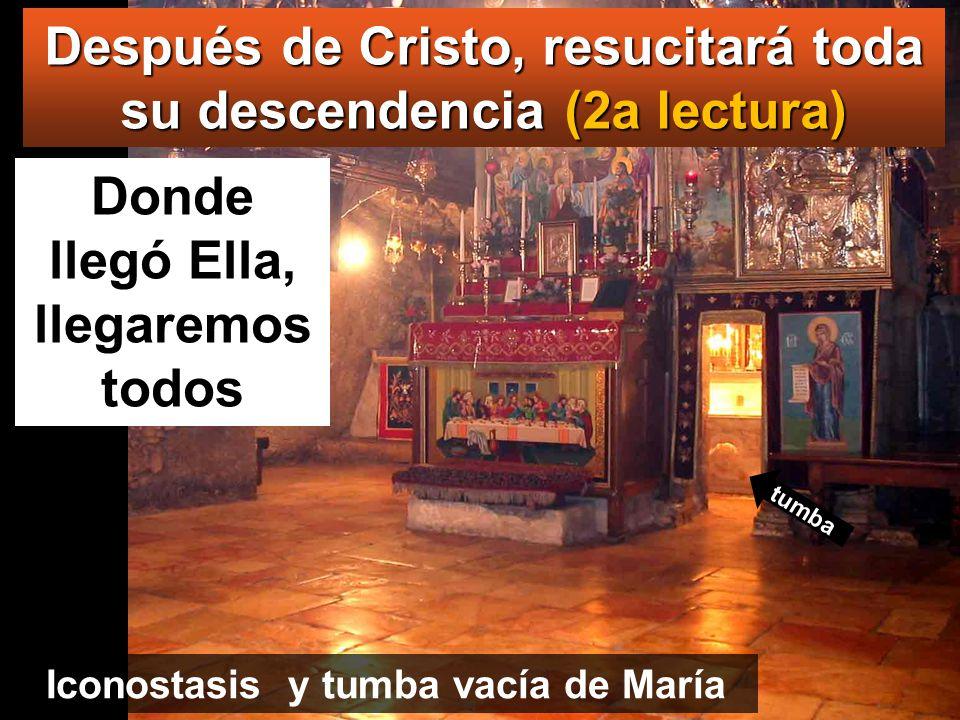 Después de Cristo, resucitará toda su descendencia (2a lectura)