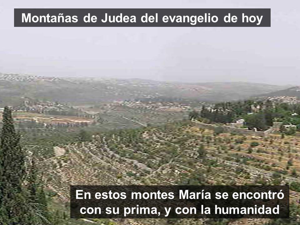 Montañas de Judea del evangelio de hoy