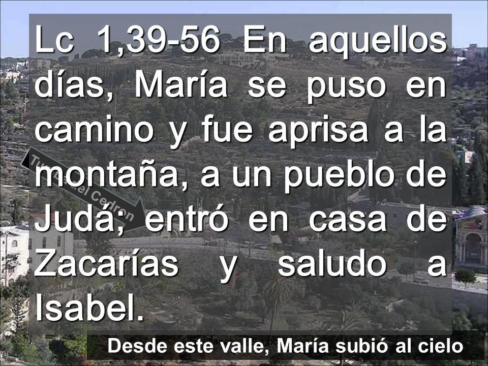 Desde este valle, María subió al cielo