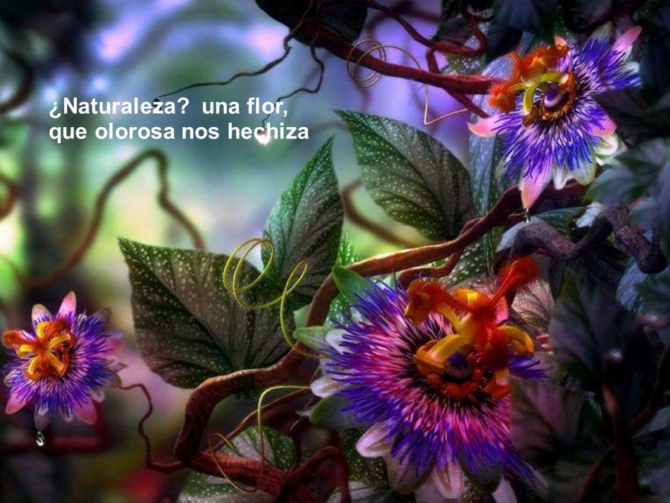 ¿Naturaleza una flor, que olorosa nos hechiza