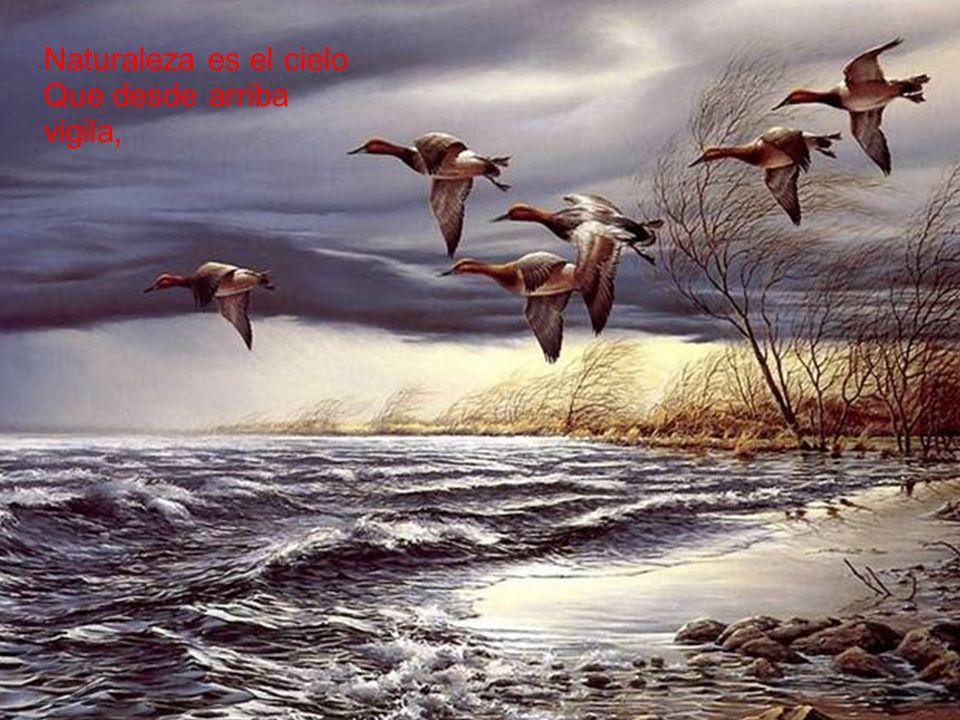 Naturaleza es el cielo Que desde arriba vigila,