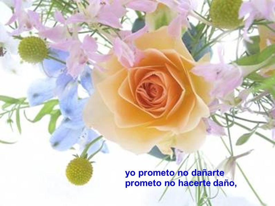 yo prometo no dañarte prometo no hacerte daño,