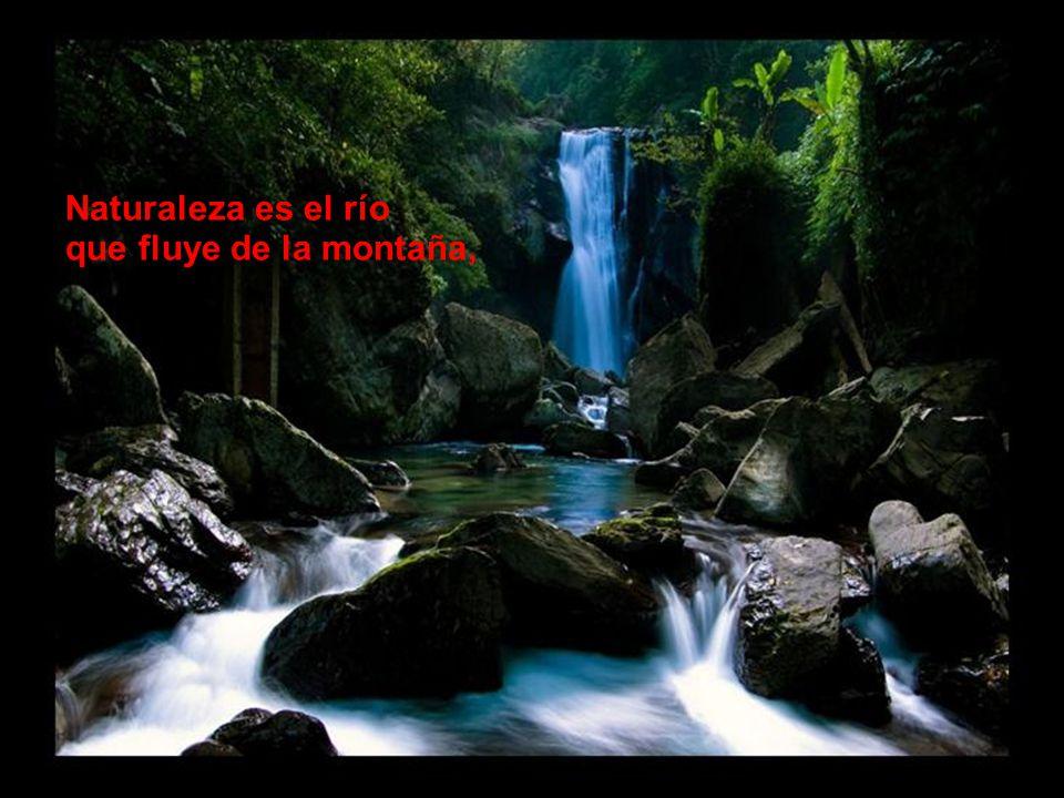 Naturaleza es el río que fluye de la montaña,