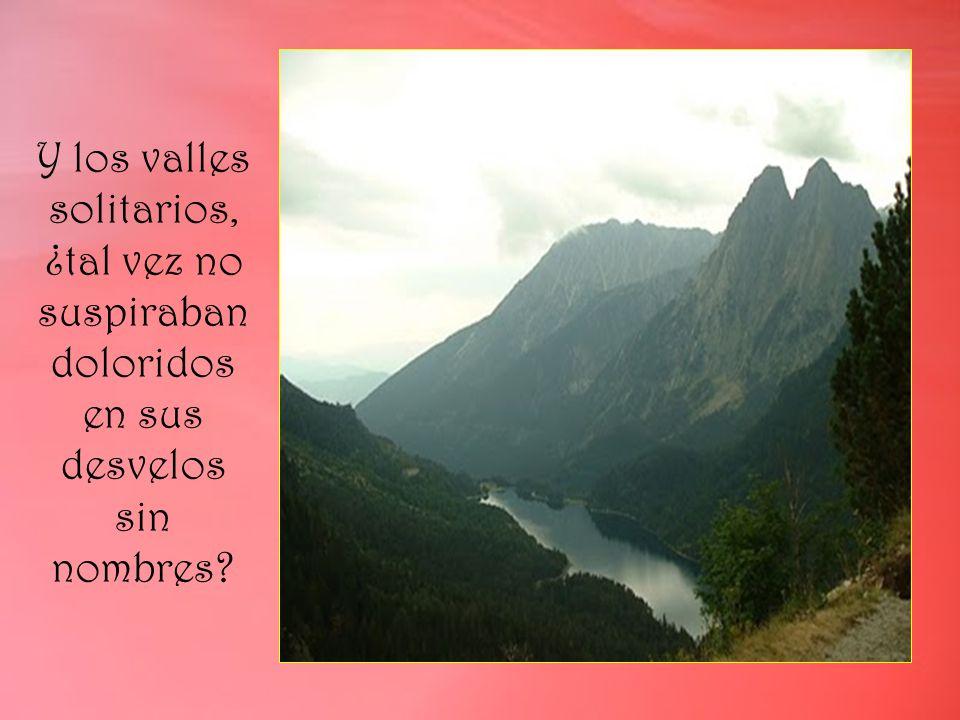 Y los valles solitarios, ¿tal vez no suspiraban doloridos en sus desvelos sin nombres