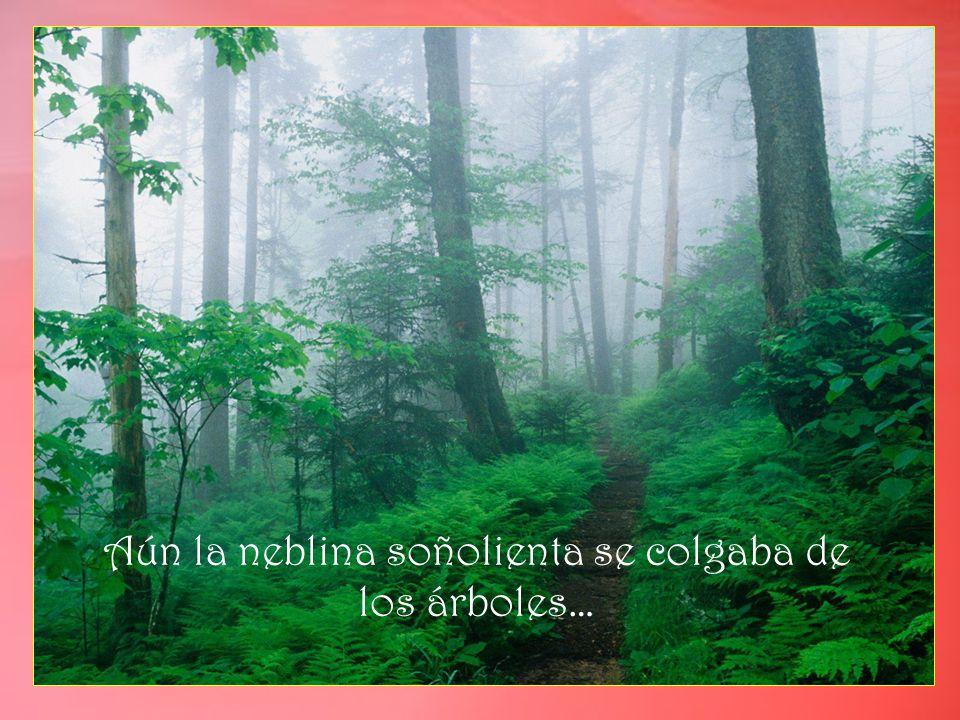 Aún la neblina soñolienta se colgaba de los árboles…