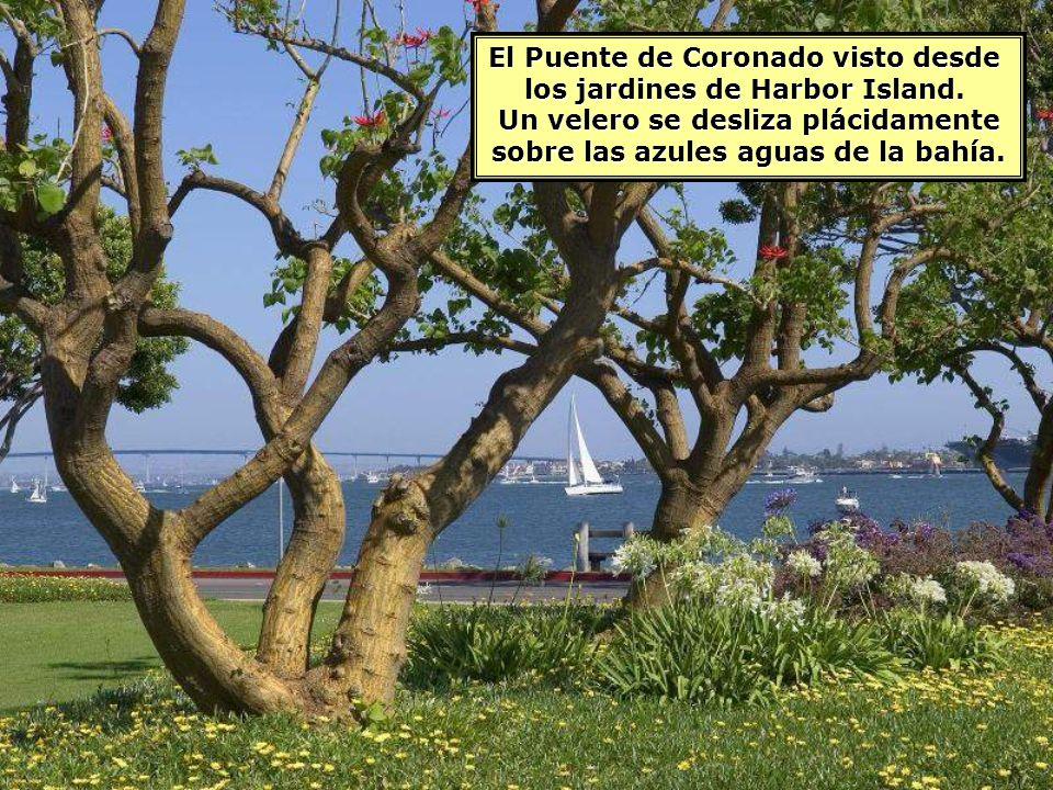 El Puente de Coronado visto desde los jardines de Harbor Island.