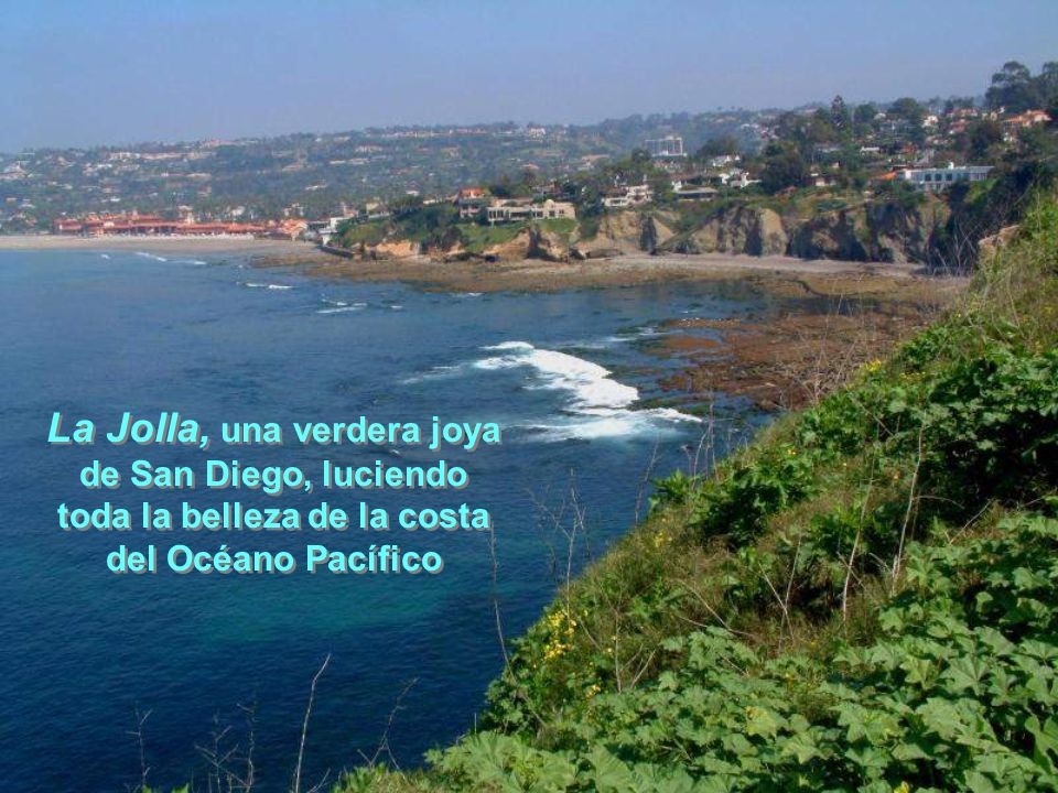 La Jolla, una verdera joya toda la belleza de la costa