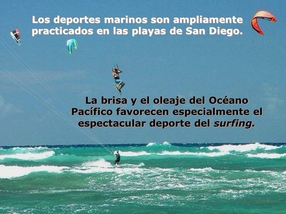 Los deportes marinos son ampliamente