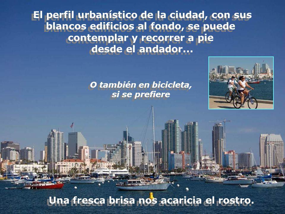 El perfil urbanístico de la ciudad, con sus