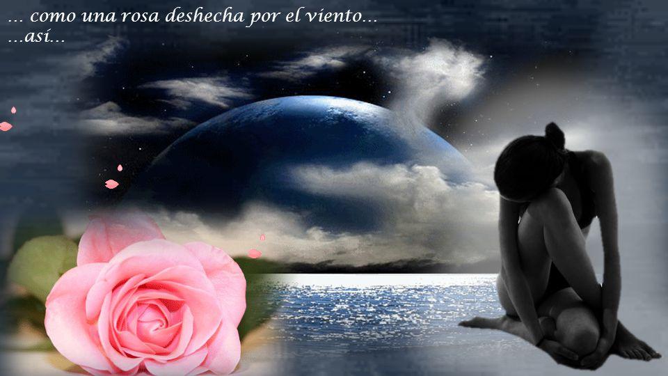 … como una rosa deshecha por el viento…