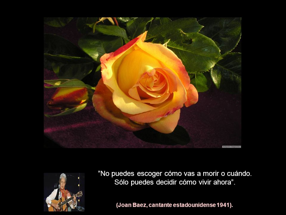 (Joan Baez, cantante estadounidense 1941).
