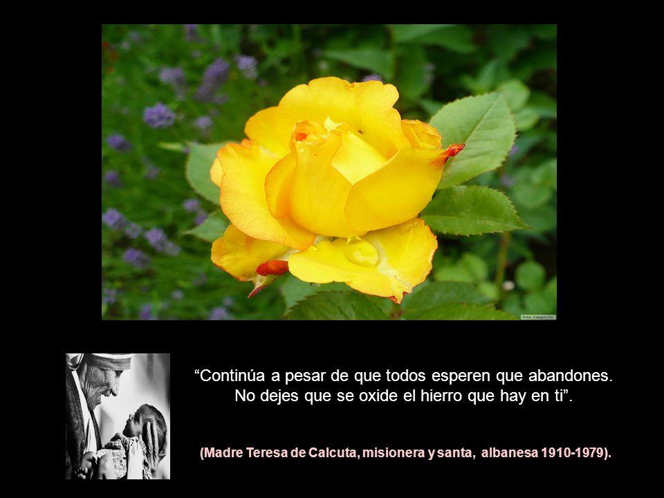 (Madre Teresa de Calcuta, misionera y santa, albanesa 1910-1979).
