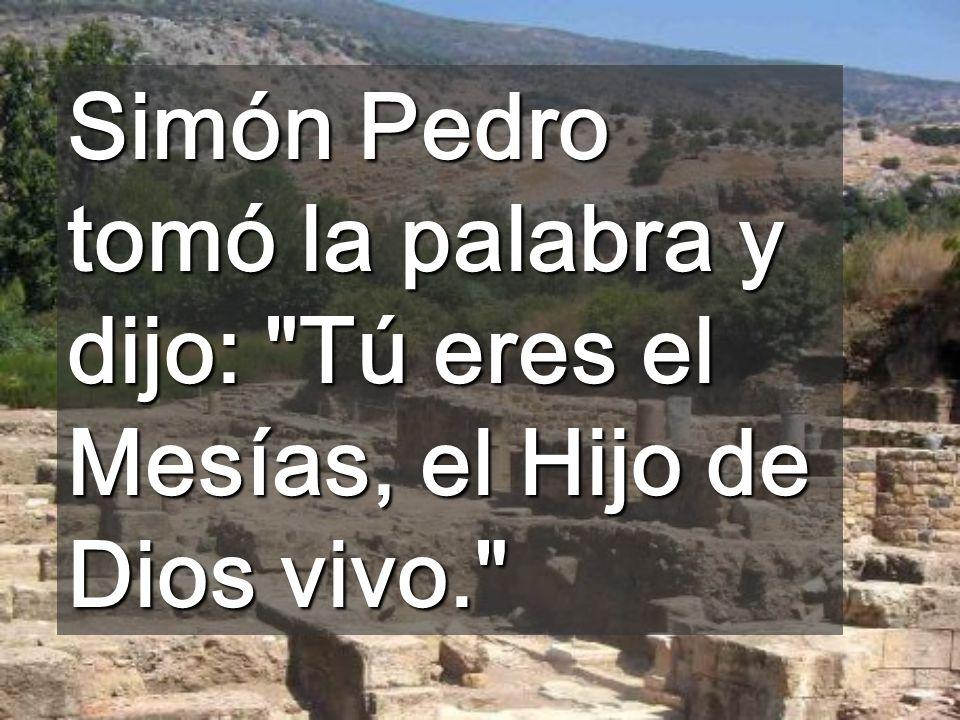 Simón Pedro tomó la palabra y dijo: Tú eres el Mesías, el Hijo de Dios vivo.