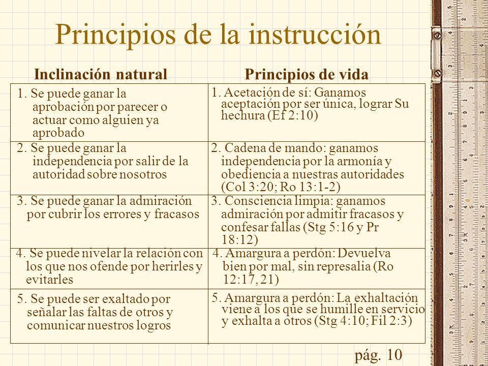 Principios de la instrucción