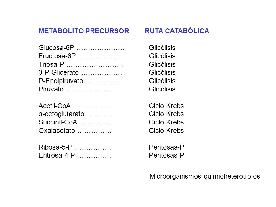 METABOLITO PRECURSOR RUTA CATABÓLICA