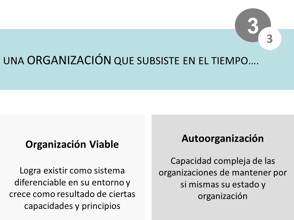 3 3 UNA ORGANIZACIÓN QUE SUBSISTE EN EL TIEMPO…. Autoorganización
