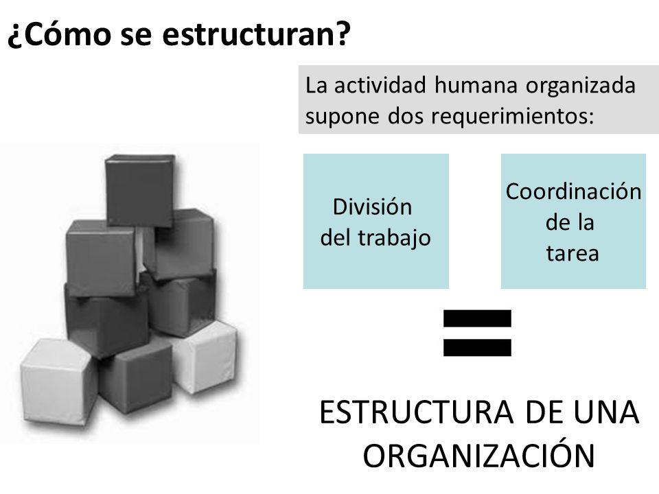 ¿Cómo se estructuran ESTRUCTURA DE UNA ORGANIZACIÓN