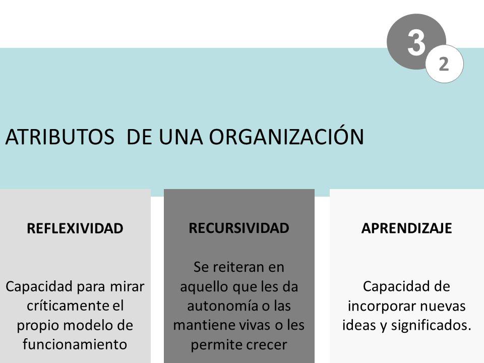 3 ATRIBUTOS DE UNA ORGANIZACIÓN 2 REFLEXIVIDAD