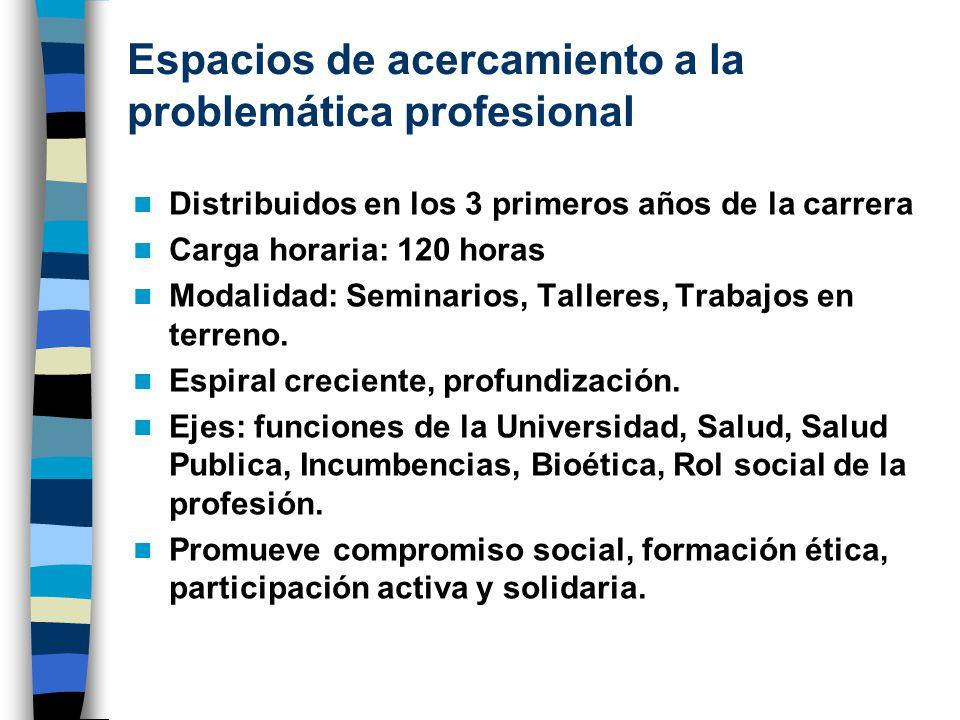 Espacios de acercamiento a la problemática profesional