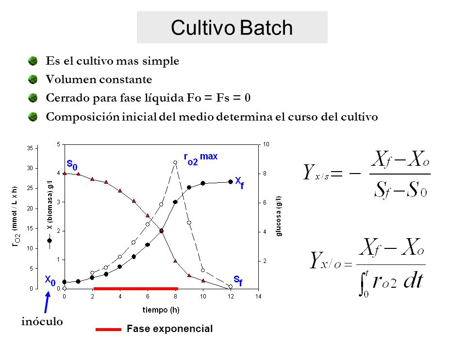 Cultivo Batch Es el cultivo mas simple Volumen constante
