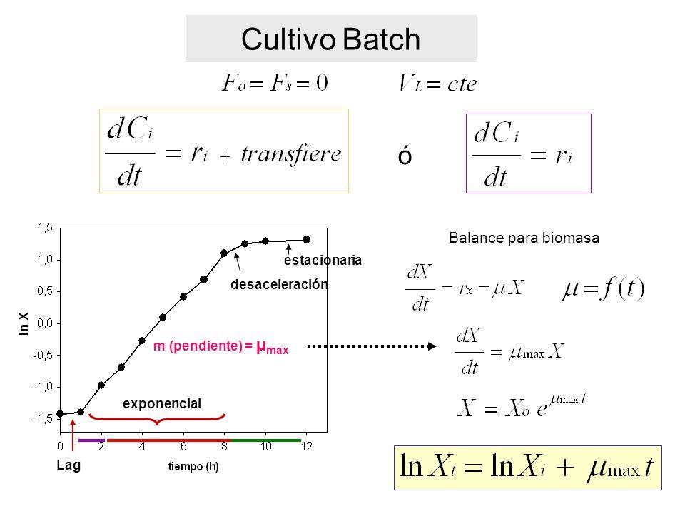 Cultivo Batch ó Balance para biomasa estacionaria desaceleración