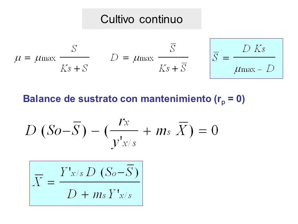 Cultivo continuo Balance de sustrato con mantenimiento (rp = 0)