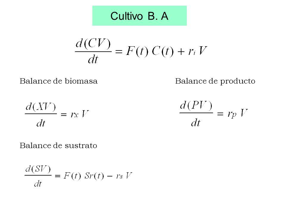 Cultivo B. A Balance de biomasa Balance de producto