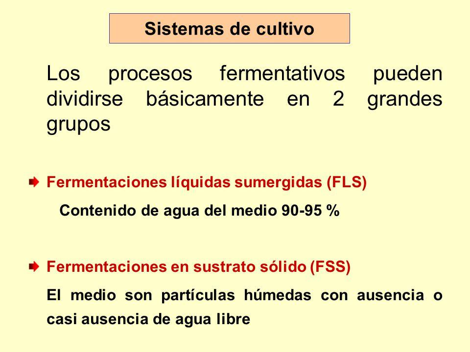 Sistemas de cultivo Los procesos fermentativos pueden dividirse básicamente en 2 grandes grupos. Fermentaciones líquidas sumergidas (FLS)