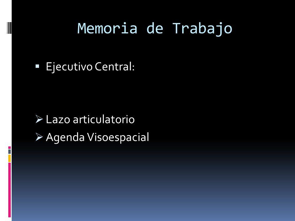 Memoria de Trabajo Ejecutivo Central: Lazo articulatorio