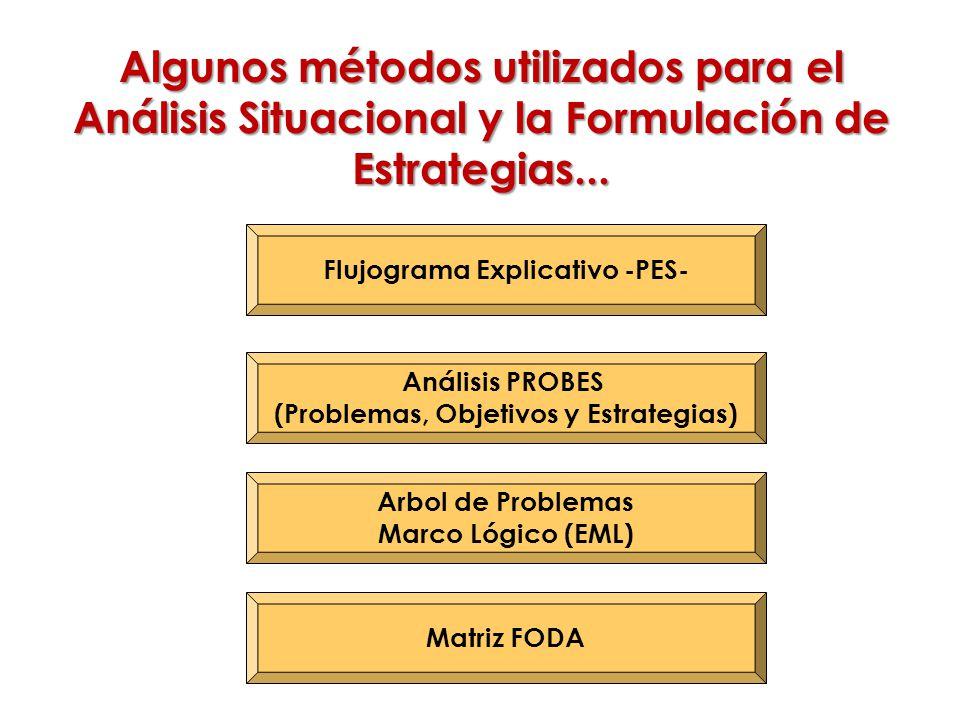 Flujograma Explicativo -PES- (Problemas, Objetivos y Estrategias)