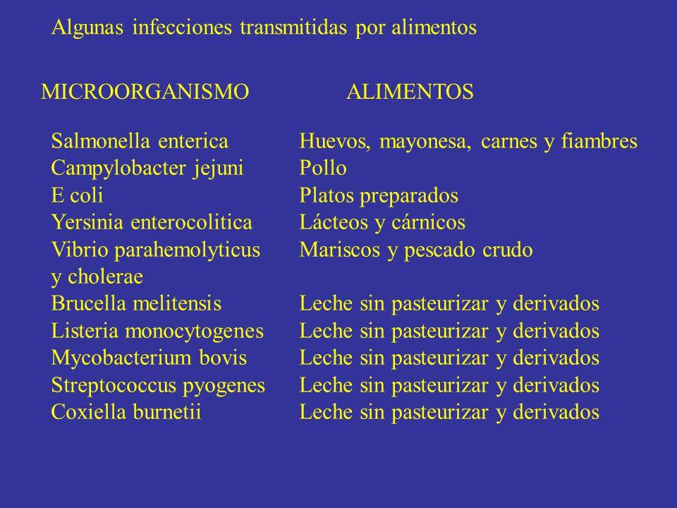 Algunas infecciones transmitidas por alimentos