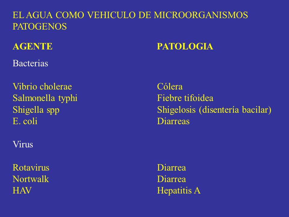 EL AGUA COMO VEHICULO DE MICROORGANISMOS