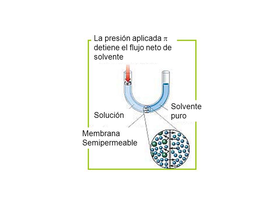 La presión aplicada  detiene el flujo neto de. solvente. Membrana. Semipermeable. Solución. Solvente.