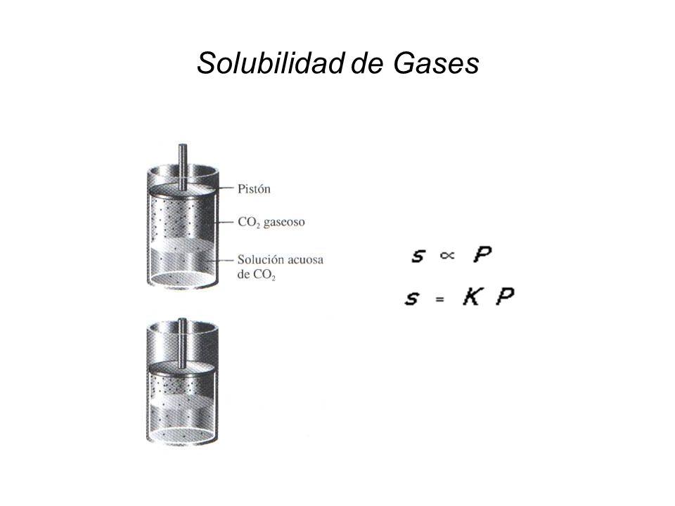 Solubilidad de Gases