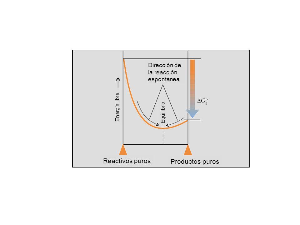 Reactivos puros Productos puros Dirección de la reacción espontánea