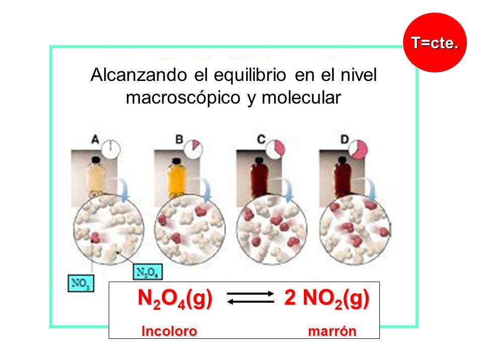 Alcanzando el equilibrio en el nivel macroscópico y molecular