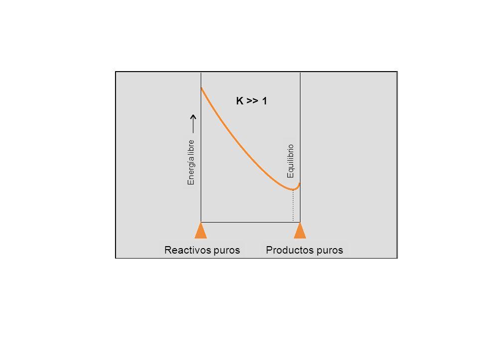 Equilibrio Energía libre Reactivos puros Productos puros K >> 1