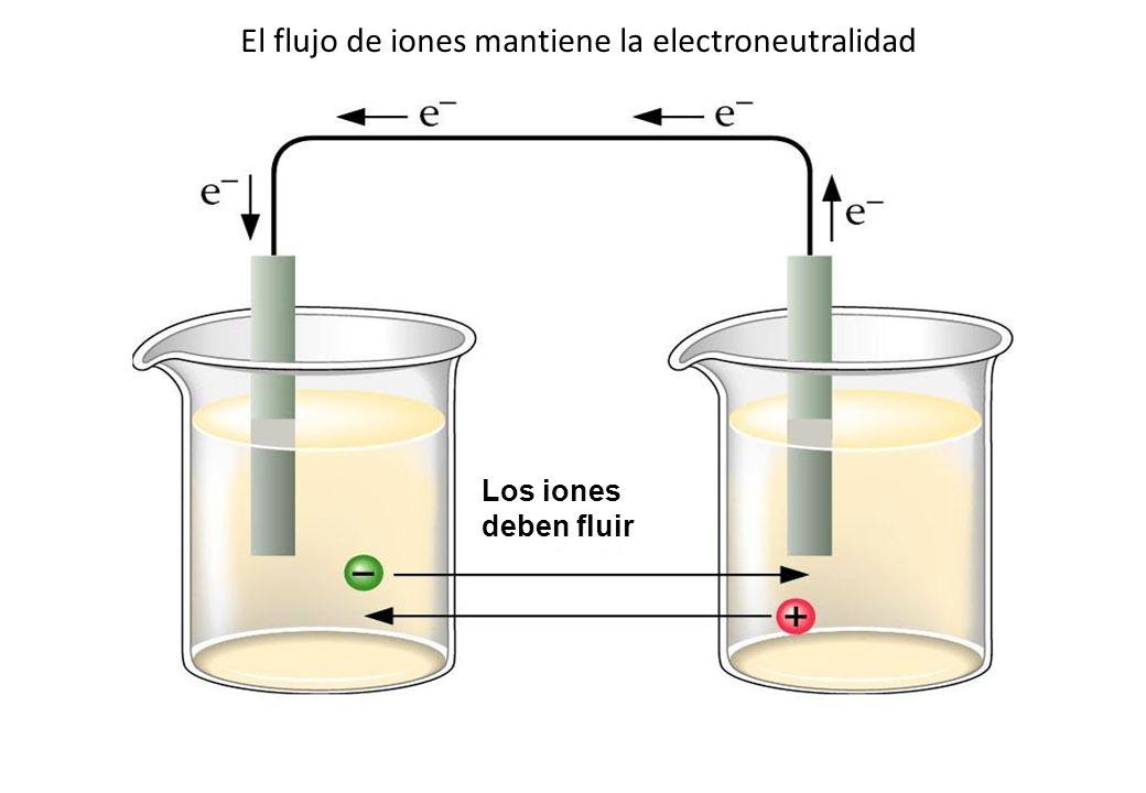 El flujo de iones mantiene la electroneutralidad
