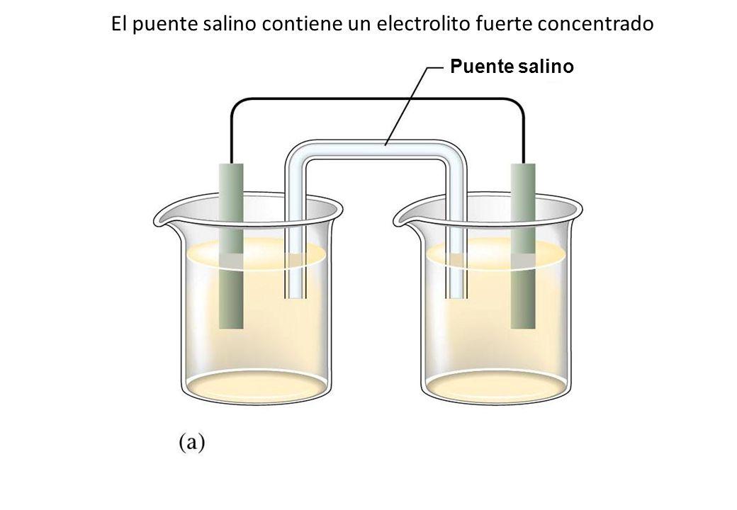El puente salino contiene un electrolito fuerte concentrado