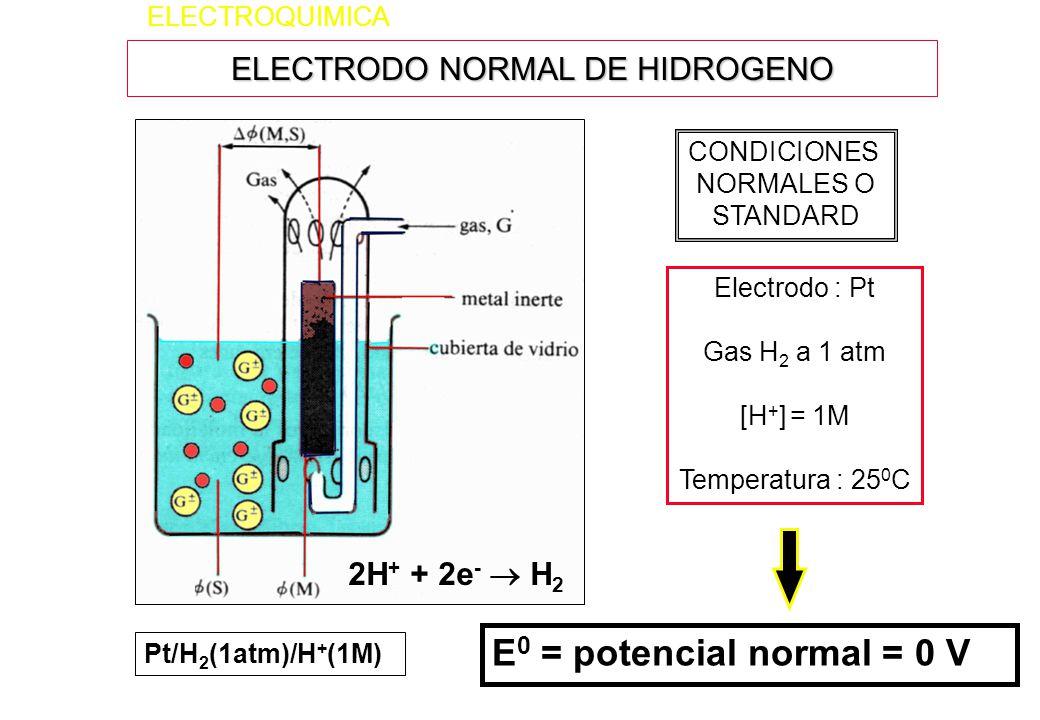 ELECTRODO NORMAL DE HIDROGENO