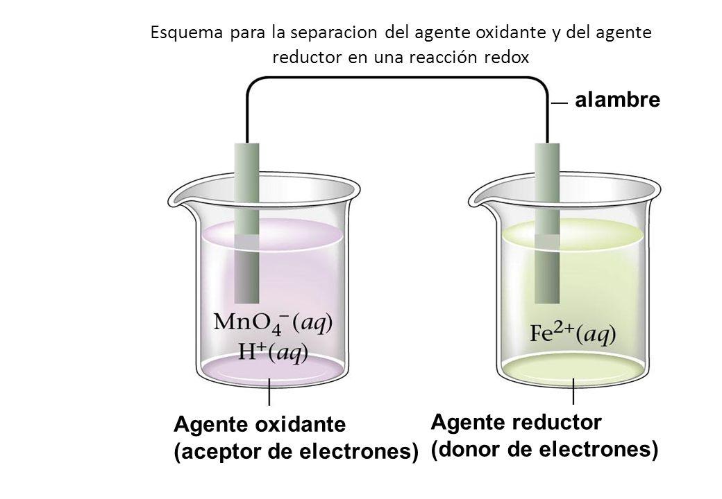 (aceptor de electrones) Agente reductor (donor de electrones)