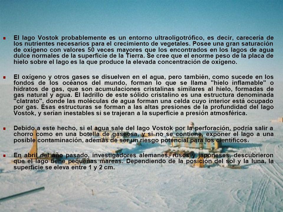 El lago Vostok probablemente es un entorno ultraoligotrófico, es decir, carecería de los nutrientes necesarios para el crecimiento de vegetales. Posee una gran saturación de oxígeno con valores 50 veces mayores que los encontrados en los lagos de agua dulce normales de la superficie de la Tierra. Se cree que el enorme peso de la placa de hielo sobre el lago es la que produce la elevada concentración de oxígeno.